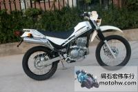 现货出售 97年川崎西藏人-250